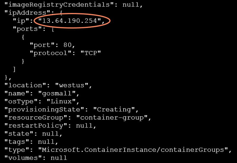 The Public IP Address of an Azure Container Instance