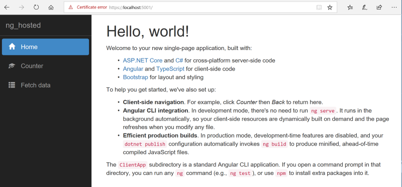 The Angular Net Core 21 Template Part Two Developer